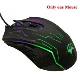 Only 1 mouse